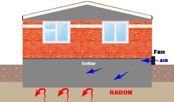 Active cellar vent